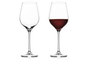 Vacuvin gin- of wijnglazen 2x Rode wijnglas